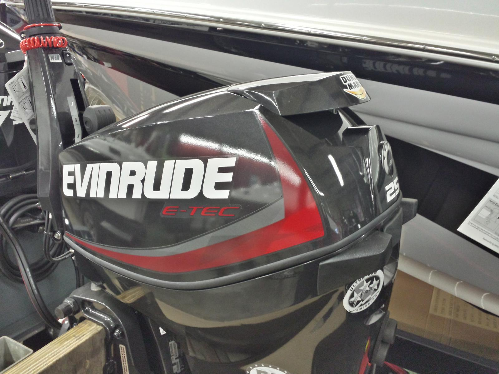 2018 Evinrude boat for sale, model of the boat is E25DGTLAF & Image # 2 of 2