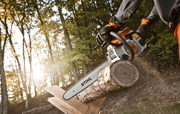 Shop STIHL Chainsaw