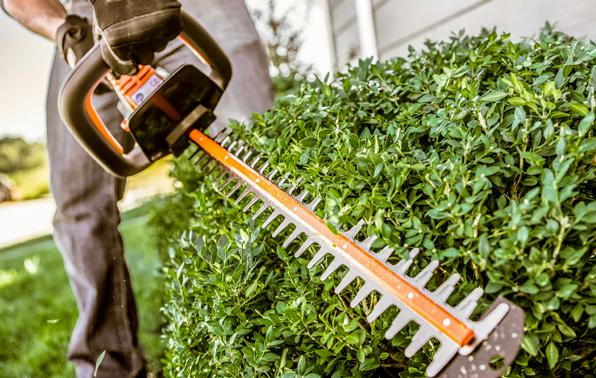 Shop STIHL Hedge Clippers