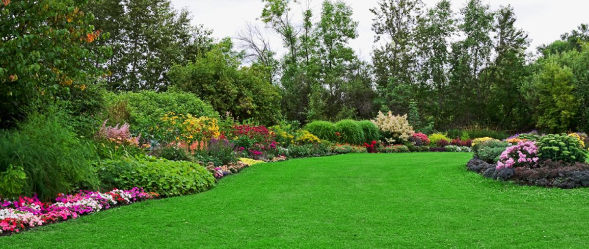 Image result for landscaping companies