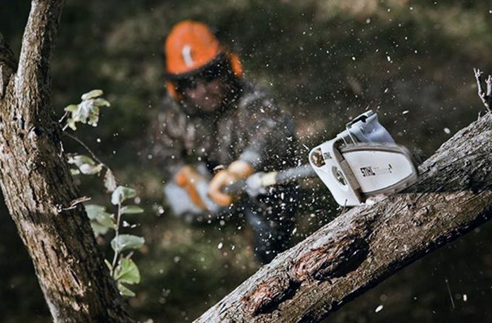 Stihl Pole Pruners