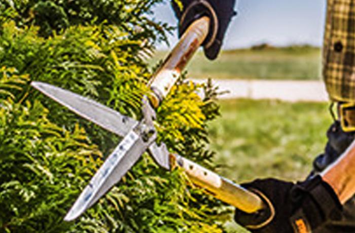 Stihl Landscaping Hand Tools