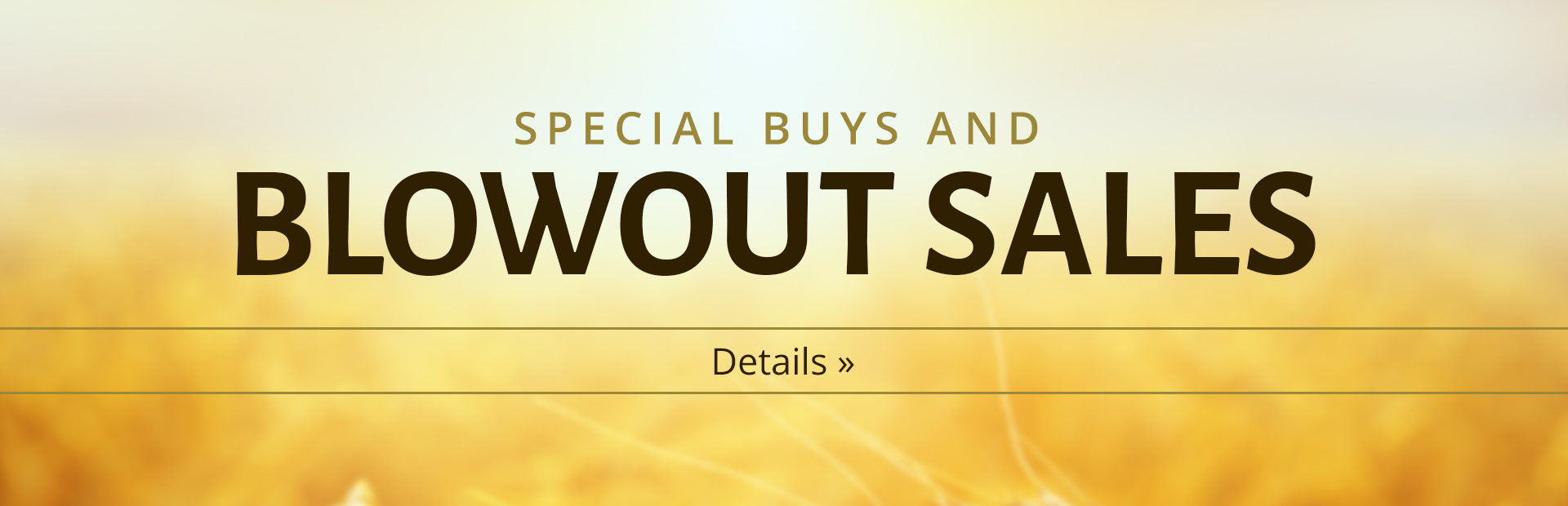 Special buys and blowout sales: Click here to browse our wares!