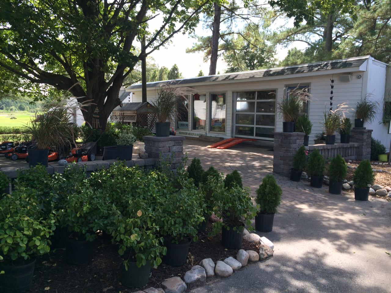 Professional Landscaping Services in Chesapeake