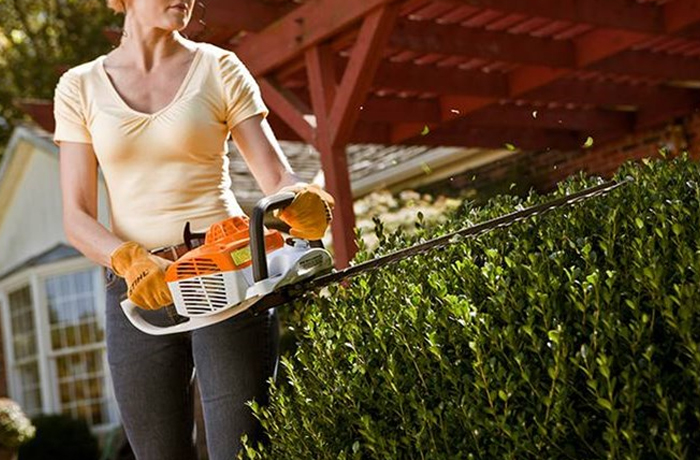 STIHL Clippers