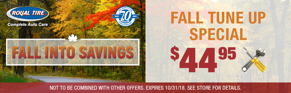 Fall Tune Up Special Only $44.95!