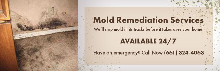 Mold Remediation Services From ServiceMaster Bakersfield!