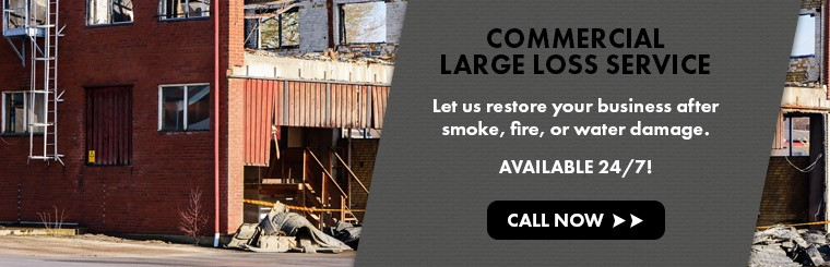 Commercial Large Loss Services