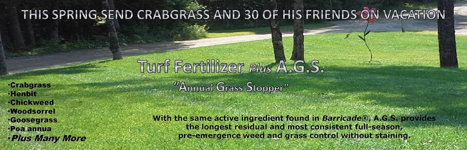 19-0-8 Fertilizer plus Annual Grass Stopper.  Spring fertilizer combined with .29% Prodiamine gives season long Crabgrass control.