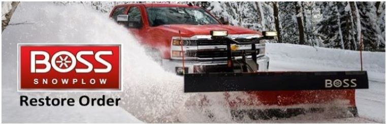 Boss Snowplow Back You Up