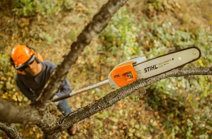 STIHL Battery-Operated Pole Pruners