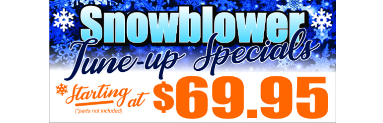 Snowblower Tune Up Special