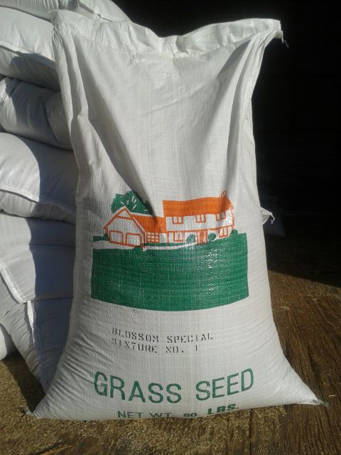 Seed Product