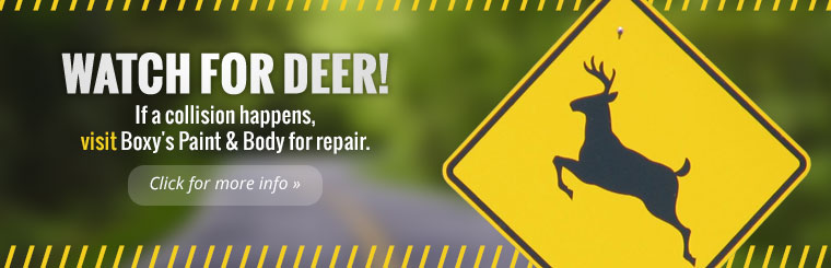 Watch for deer! If a collision happens, visit Boxy's Paint & Body for repair. Click here for more information.