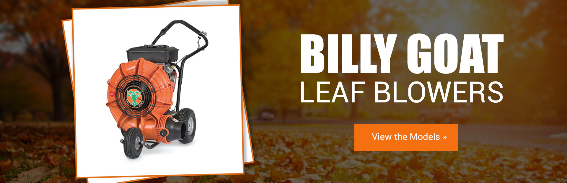 Billy Goat Leaf Blowers: Click here to view the models.