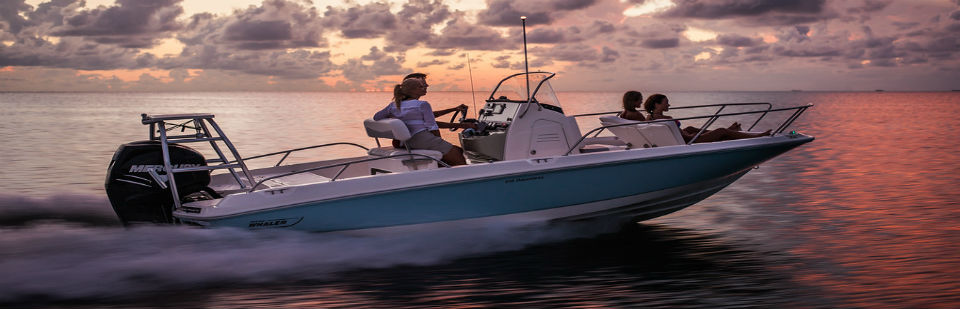 Boston Whaler In Stock Inventory: Click Here to View