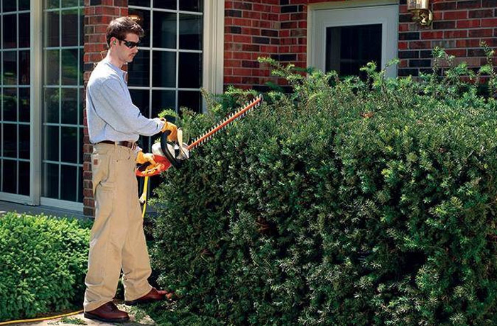 STIHL Residential Hedge Clippers