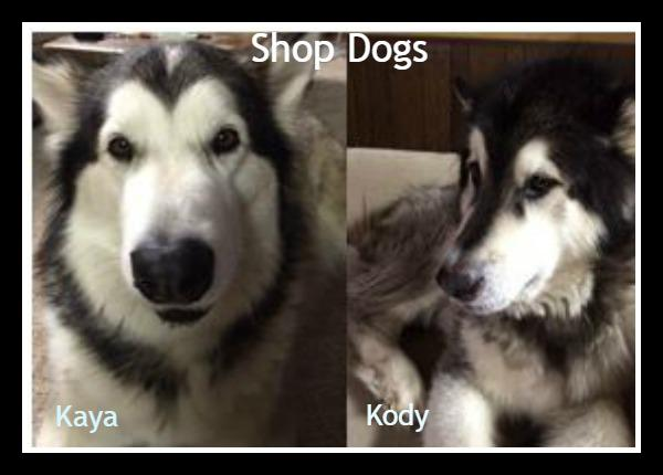 shop_dogs_about_us