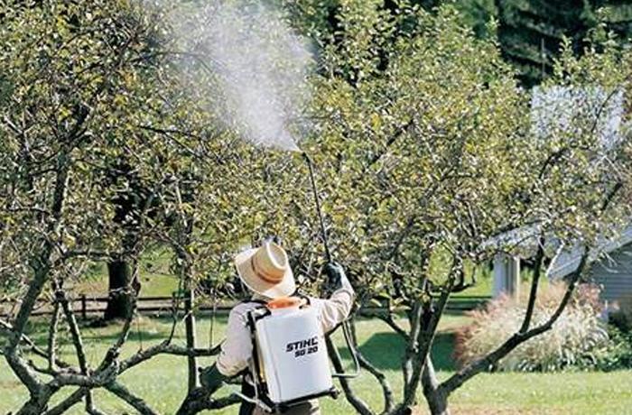 STIHL Residential Sprayers