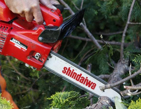 Shop Shindaiwa Chainsaws