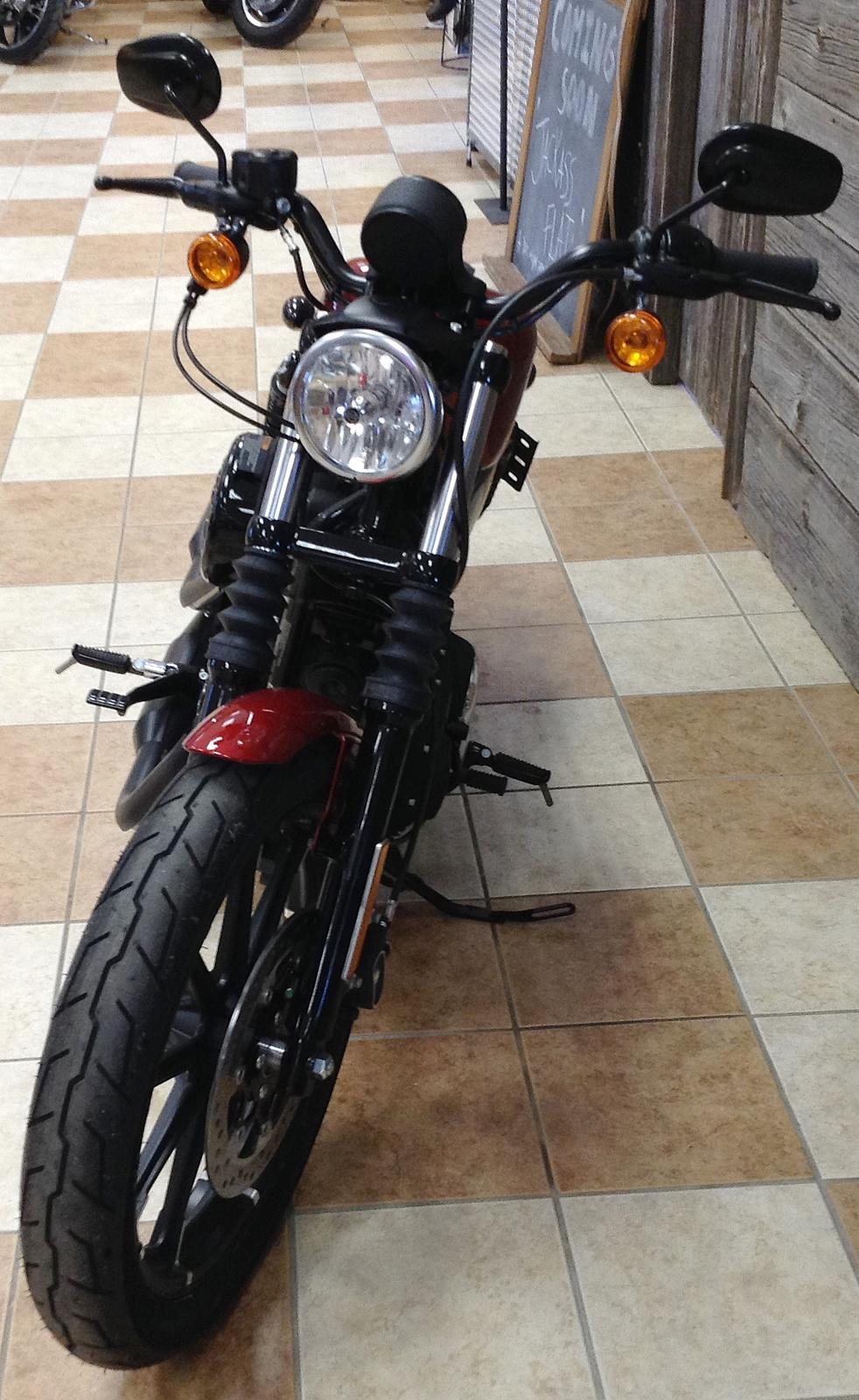 2019 Harley-Davidson® Iron 883™ - Color Option for sale in