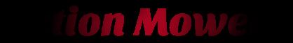 Action Mowers Logo