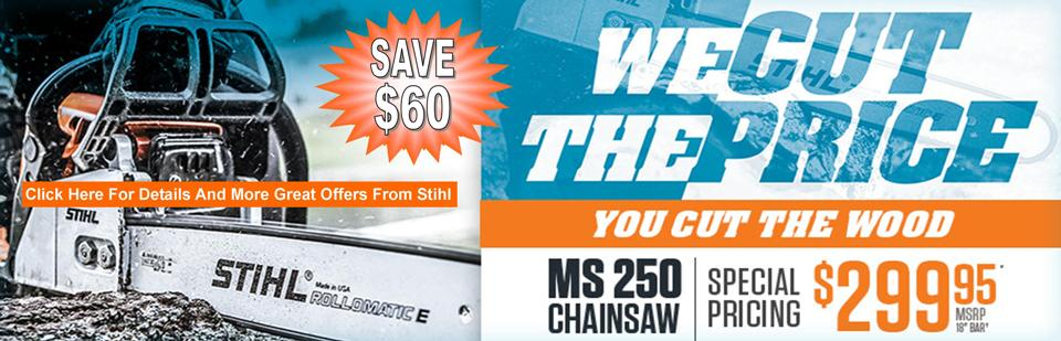 "SAVE $60 ON THE MS 250 WITH 18"" BAR"