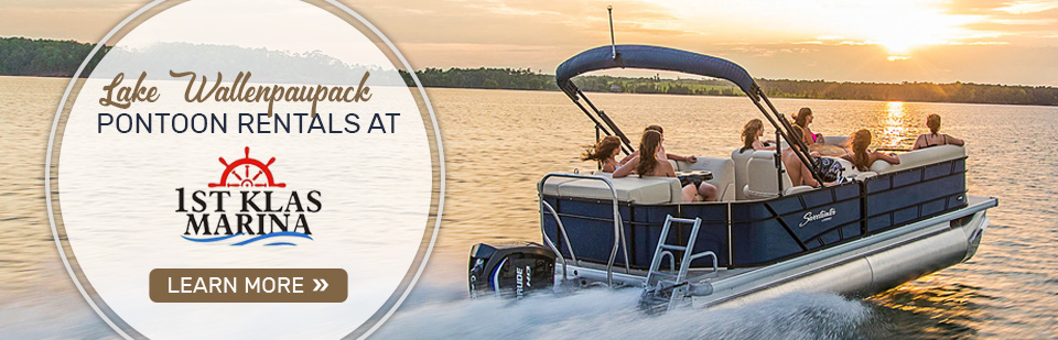 Pontoon Rentals in Tafton, PA