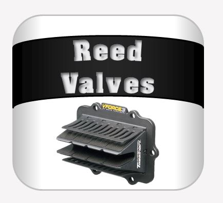 Reed Valves