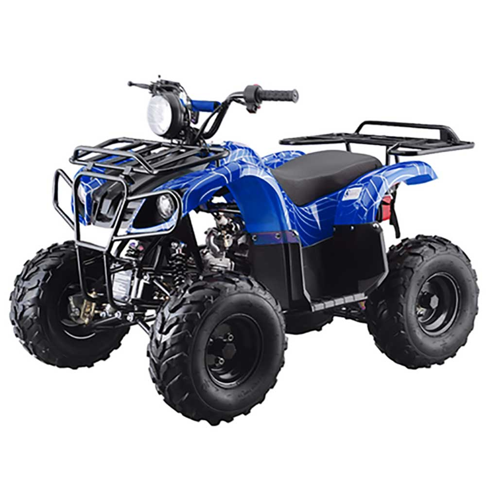 2018 tao tao 110d utility atv 9 colors to choose from for sale brochure sciox Images
