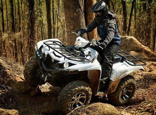 Yamaha Grizzly Series Utility ATVs