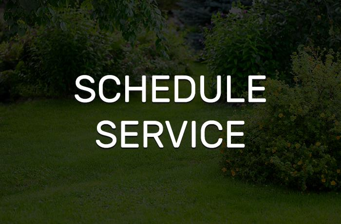 Schedule Your Next Service with Stanley & Son!