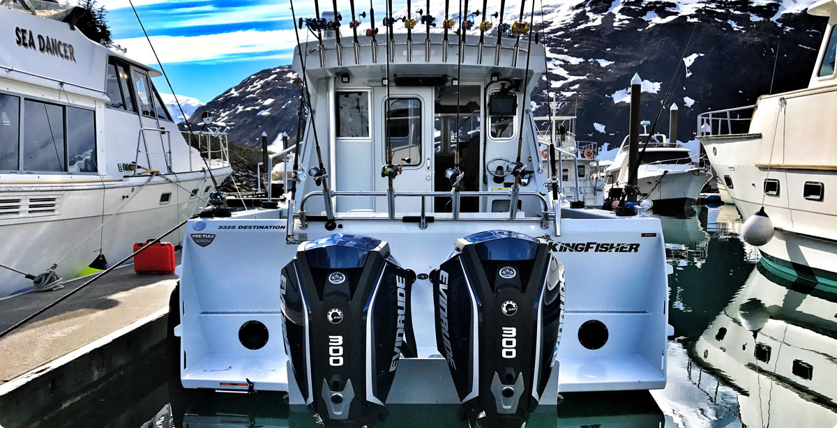 Evinrude Outboard Motors | Portable Outboards | ETEC