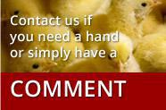 CONTACT US if you need a hand a simply have a comment.