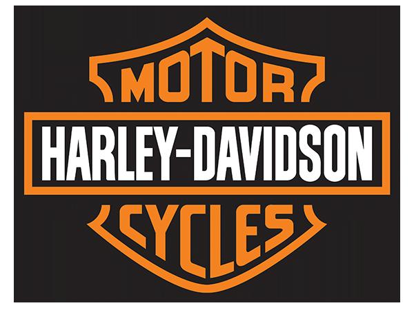 2011 Harley-Davidson® XL1200C - SPORTSTER